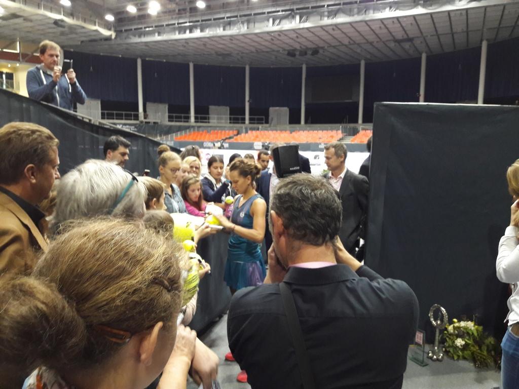 Barbora Strycova, Linz Champion 2017
